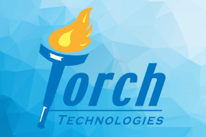 "Torch Makes Bloomberg Government ""Top 200"" List for 2nd Year"