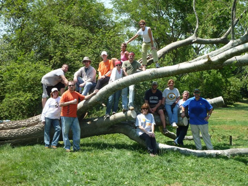 Torch employees clear debris following the April 2011 Tornado Outbreak.